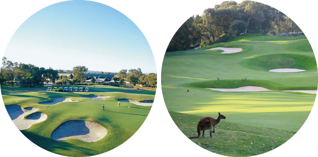 Golf in Perth, Western Australia